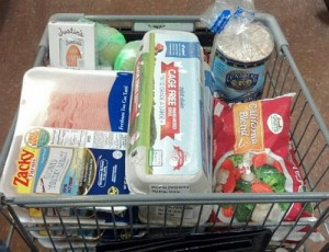 grocery shopping cart for bodybuilding